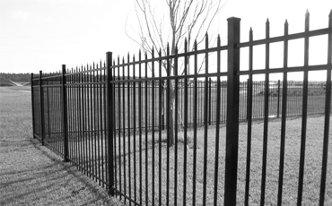 Забор из металлического профиля